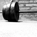 Free Programs For Email Subscribers – Training and Diet Plans